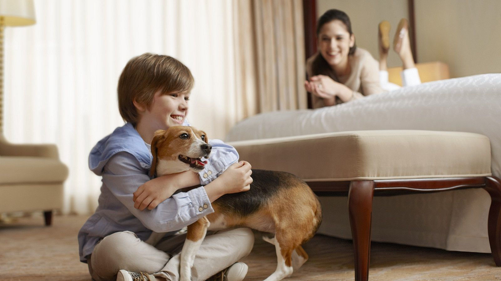 Hotel Features - Pet Policy